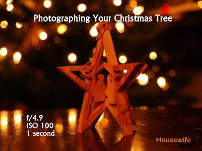Tips for Photographing a Christmas Tree