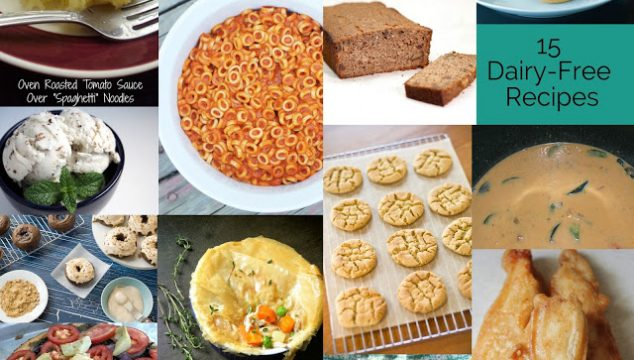 15 Dairy Free Recipes and Creative Showcase Link-up