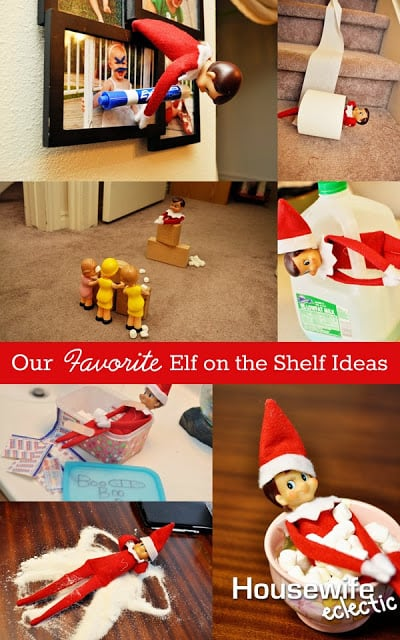Our Favourite Tree Guide Trees Of The Carolinian Forest: Our Favorite Elf On The Shelf Ideas