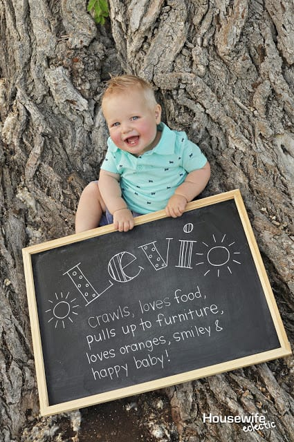 Tips For A Perfect Diy 1 Year Old Photo Shoot Housewife