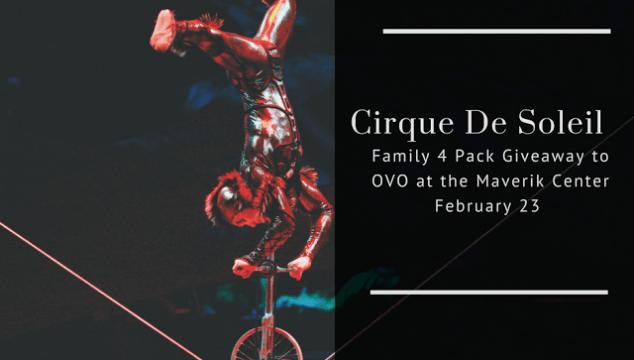 Cirque De Soleil Winner