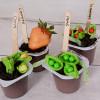 Garden Snack Pack®