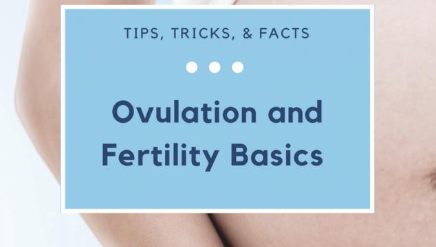 Ovulation and Fertility Basics