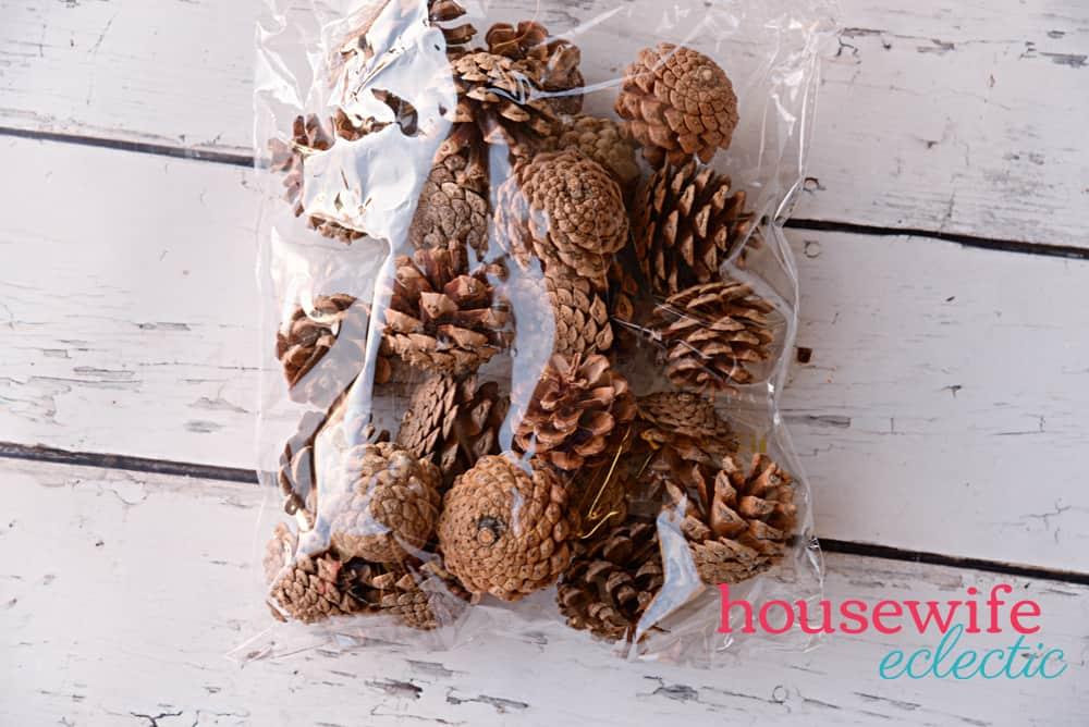 Thanksgiving Centerpiece : Pinecones