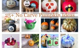 25+ No Carve Pumpkin Ideas