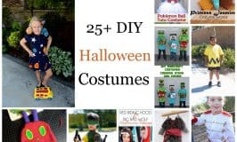 25+ DIY Halloween Costumes